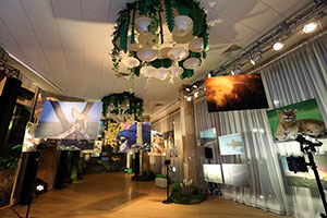Wildlife Exhibition Opens at MGIMO